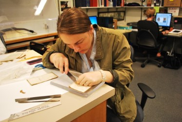 Provocation through Accessibility at Special Collections at Musselman Library