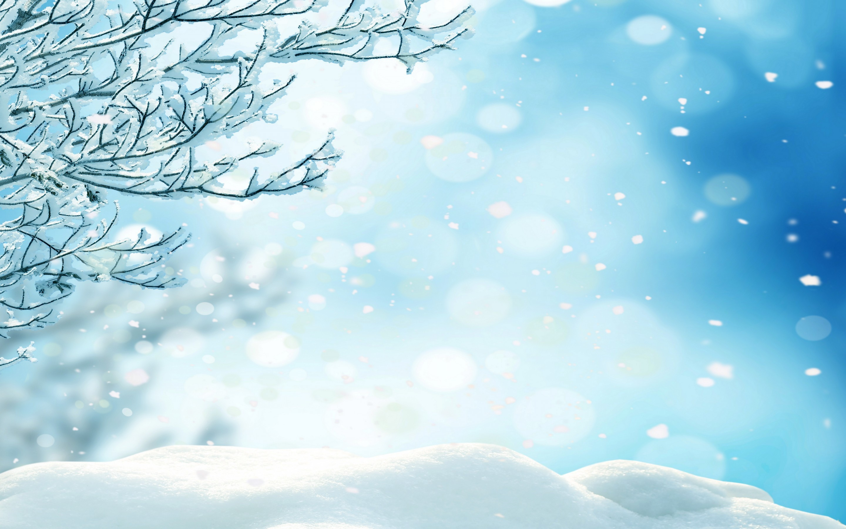 Winter Snowflakes Wallpaper 42 Images