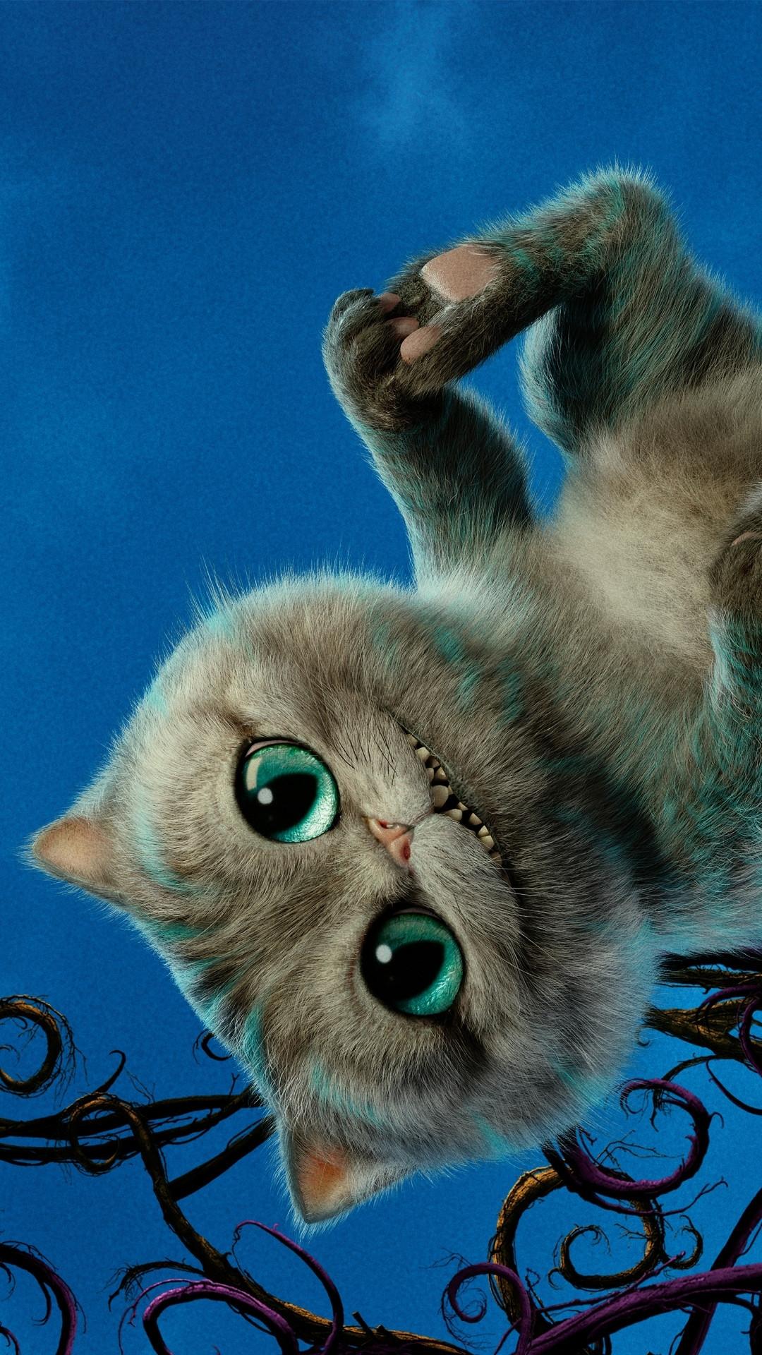 Grumpy Cat Screensaver Www Tollebild Com