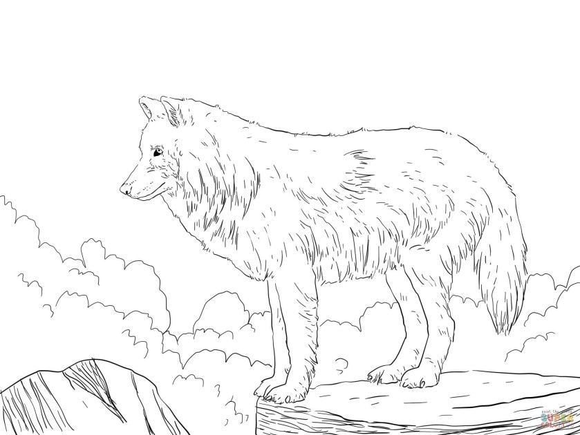 animal jam wallpaper arctic wolf (69 images)