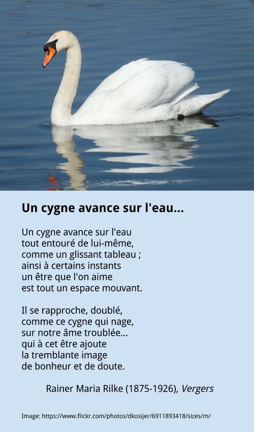 Rilke – Un cygne avance sur l'eau