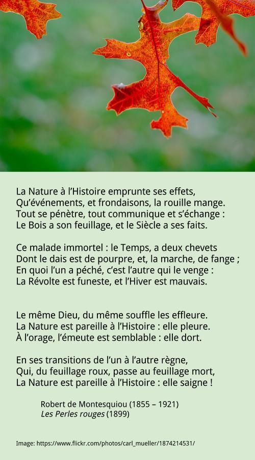 Robert de Montesquiou – La Nature à l'Histoire emprunte ses effets