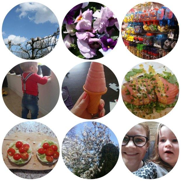 Week in fotos 15