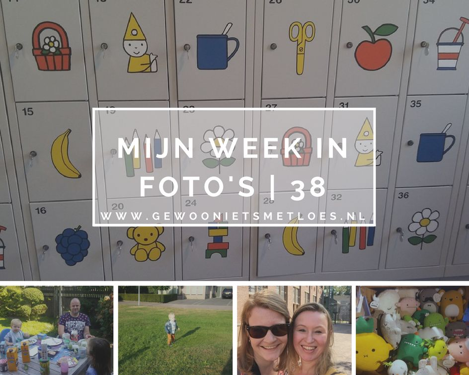 mijn week in foto's