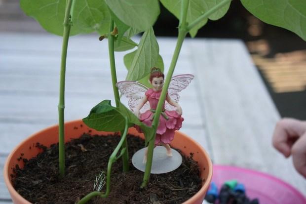 my-fairy-garden-flowerpot-17