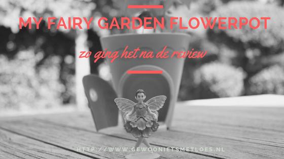my-fairy-garden-flowerpot