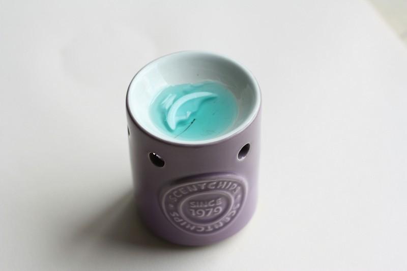 wax melts van kruidvat (3)-