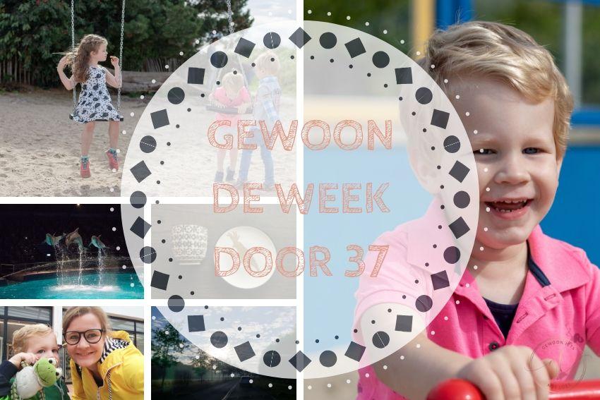 [:nl]Gewoon de week door 37: Korte dagen werken en een dagje Dolfinarium[:]