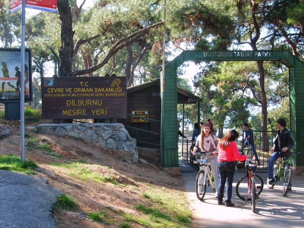 Anadolu Yakası Piknik Alanları