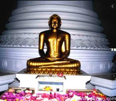 Sri Lanka Fil Yetimhanesi