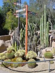 San Diego Hayvanat Bahçesi