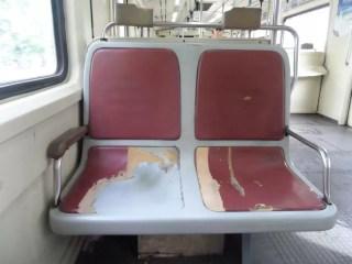 Eskimiş Tigre Treni