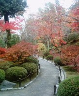 Japon bahçesinden