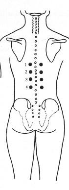 drukpunt-massage-tennisbalmassage-maagkrampen-acupressuur-gezondheid