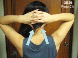 Acupressuur GB20,hoofdpijn, nekpijn, zere ogen, energie, vermoeidheid, gezondheid-workshops