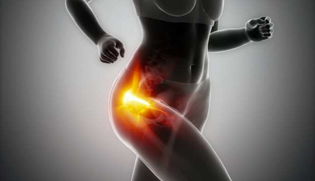pain in the hip hip pain