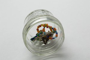 Rings in Jar