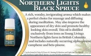 northern-lights-oil