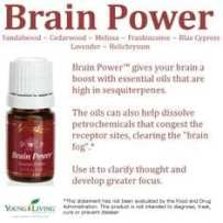 Brain Power Blend Gives Your Brain a Boost