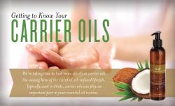 v-6-massage-oil