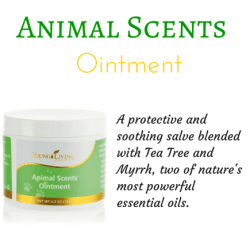 Animals Scents Ointment
