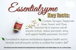 Essentialzymes
