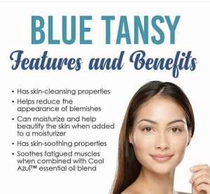 blue-tansy benefits