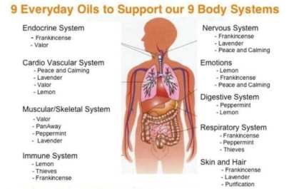 body-systems_oils_chart