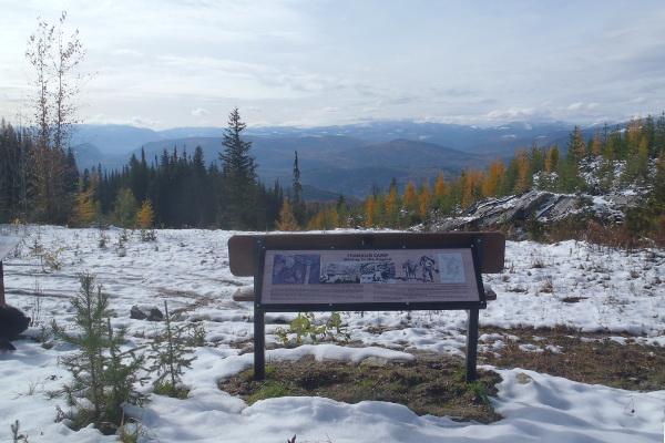 Franklin Camp Bench