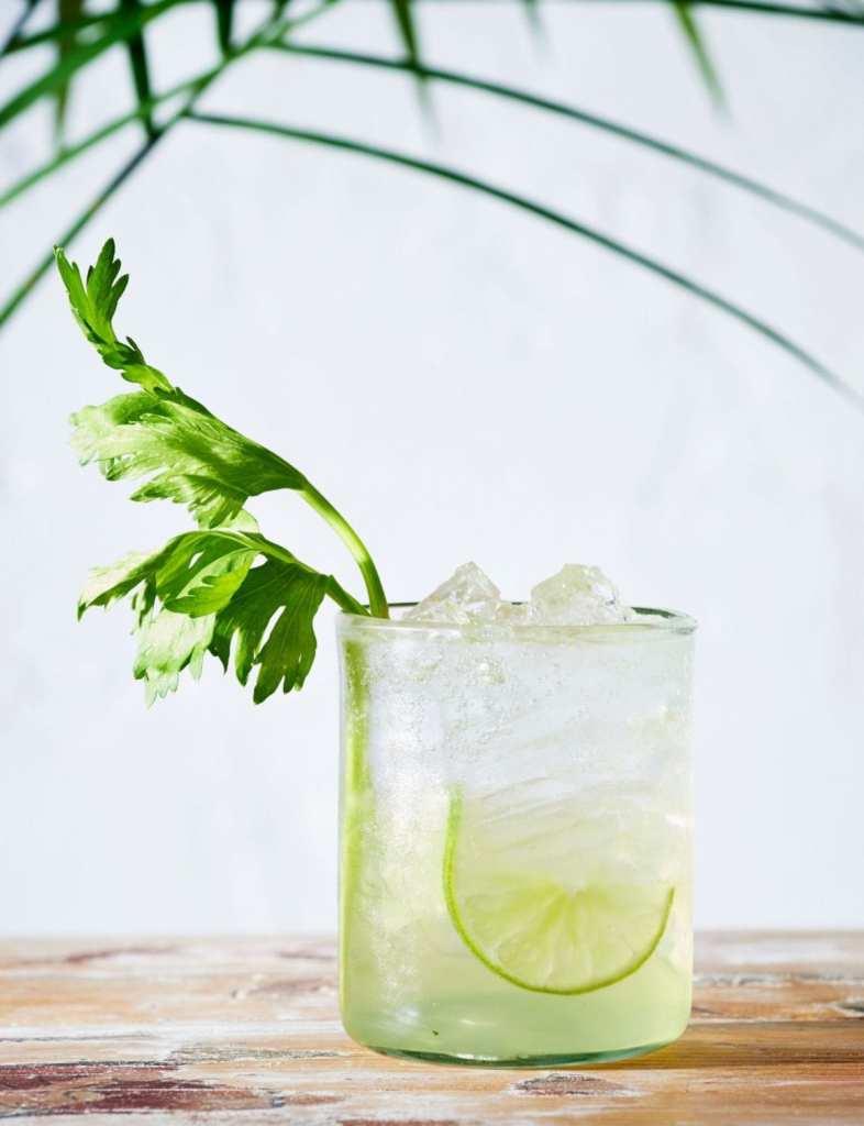 Celery Gin Spritz Gluten-Free Recipe