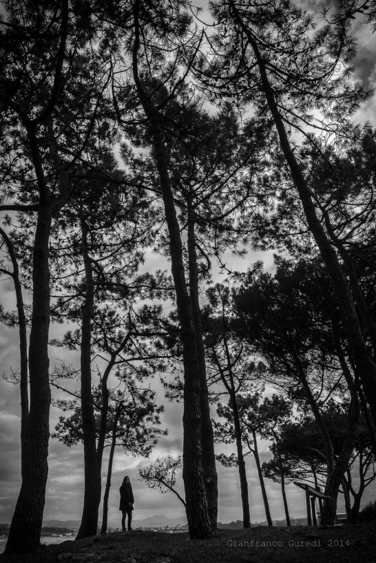 Pequeña, entre los árboles.
