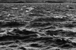 Mar picada en la Bahía, sí, ahí también.