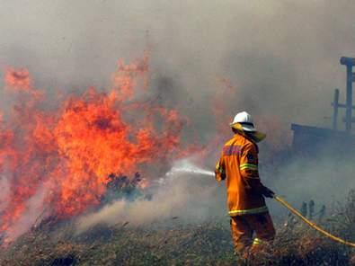 Feuer bei Sydney (Foto: REUTERS)
