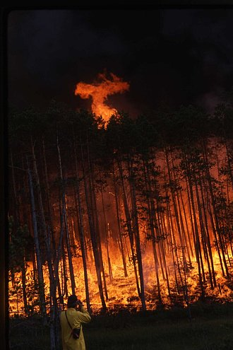 Waldbrand in Sibirien