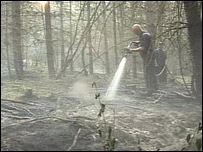 Fireman damping down a forest fire
