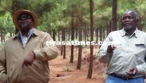 Msaka (left) walking in the plantantion