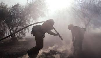 Forest fire raging near Bansko