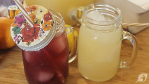 DIY Electrolyte Punch