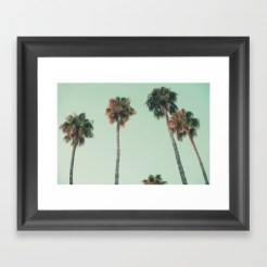 palm-trees-at-sunset273705-framed-prints