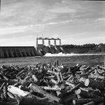 Woods - Exploit's Dam September 1956