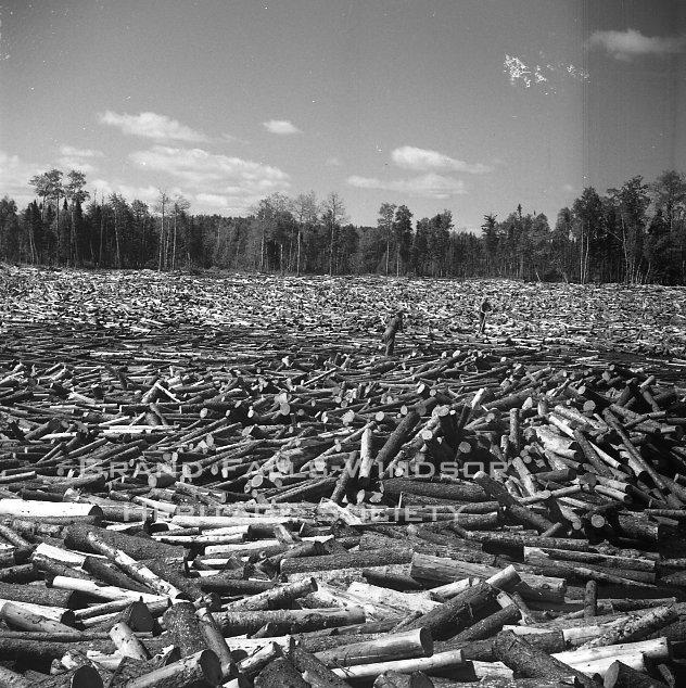 Woods department. Bishop's Falls Rattling Brook. Sluicing Wood. July 1955