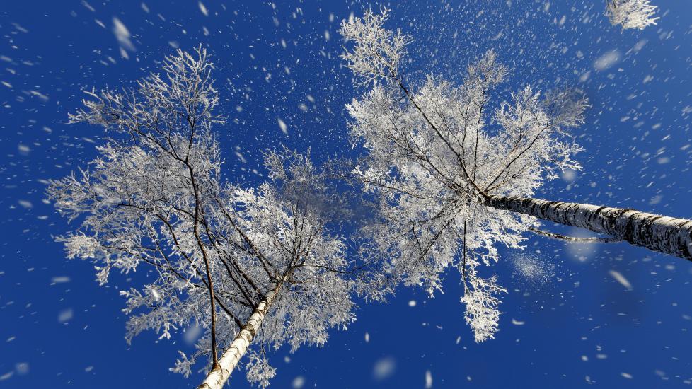 BLÅ MANDAG - GRÅ ONSDAG: I dag var det knapt en sky å se på himmelen i Oslo. Et væromslag sørger imidlertid for at det trolig blir en stund til neste gang det blir klarvær i hovedstaden. Allerede i morgen ettermiddag vil det skye til, samtidig som temperaturene øker, opplyser Meteorologisk Institutt. Foto: Tom Schandy / NN / Samfoto