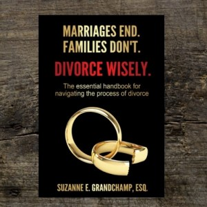 Divorce Wisely Book on wood background Minnesota Wayzata