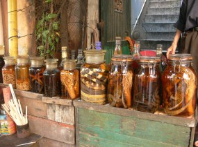 Health Tonics in alcohol - Forest Gecko's, Snake and Piglet's etc etc