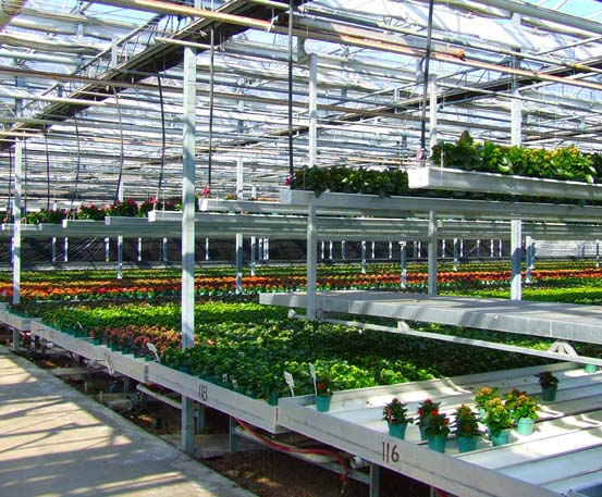 Benches Amp Double Rail Carts Commercial Greenhouse
