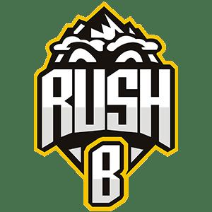 Team RushB Dota 2 Roster Matches Statistics