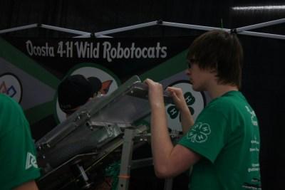 Ocosta Robotocats