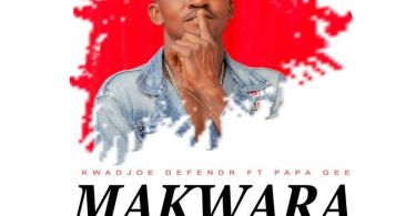 Kwakoe Defender - Kwara ft. Papa Pee