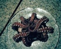 Poulpe, 2009 (Octopus) - ©David Favrod