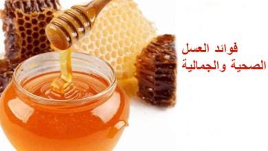 صورة أهم 5 فوائد صحية وجمالية للعسل.. تعرفي عليها
